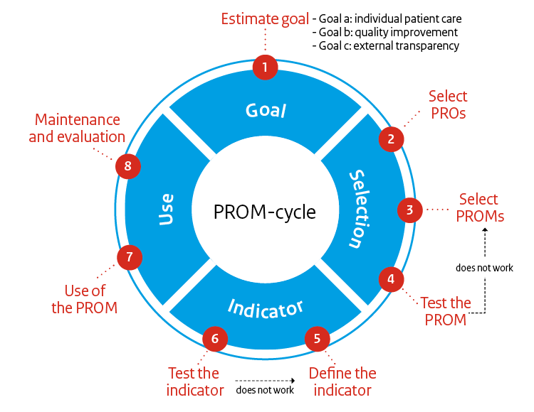PROM cycle with phases of PROM development